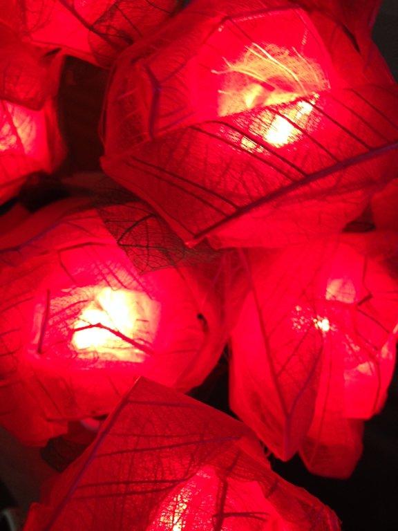 LED auduma rozes